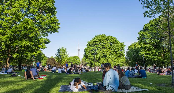 ما هي الأنشطة المسموحة والممنوعة في حدائق تورونتو؟