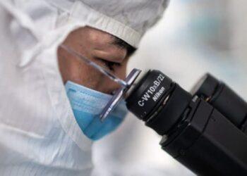 الصين تبلغ عن أول إصابة بشرية بفيروس إنفلونزا الطيور H10N3