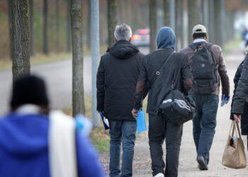 اللجوء في هولندا